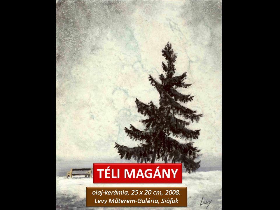 TÉLI MERENGÉS olaj-kerámia, 25 x 20 cm, 2008. Levy Műterem-Galéria, Siófok olaj-kerámia, 25 x 20 cm, 2008. Levy Műterem-Galéria, Siófok