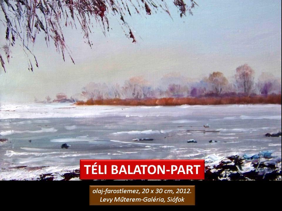 TÉLI MAGÁNY olaj-kerámia, 25 x 20 cm, 2008. Levy Műterem-Galéria, Siófok olaj-kerámia, 25 x 20 cm, 2008. Levy Műterem-Galéria, Siófok