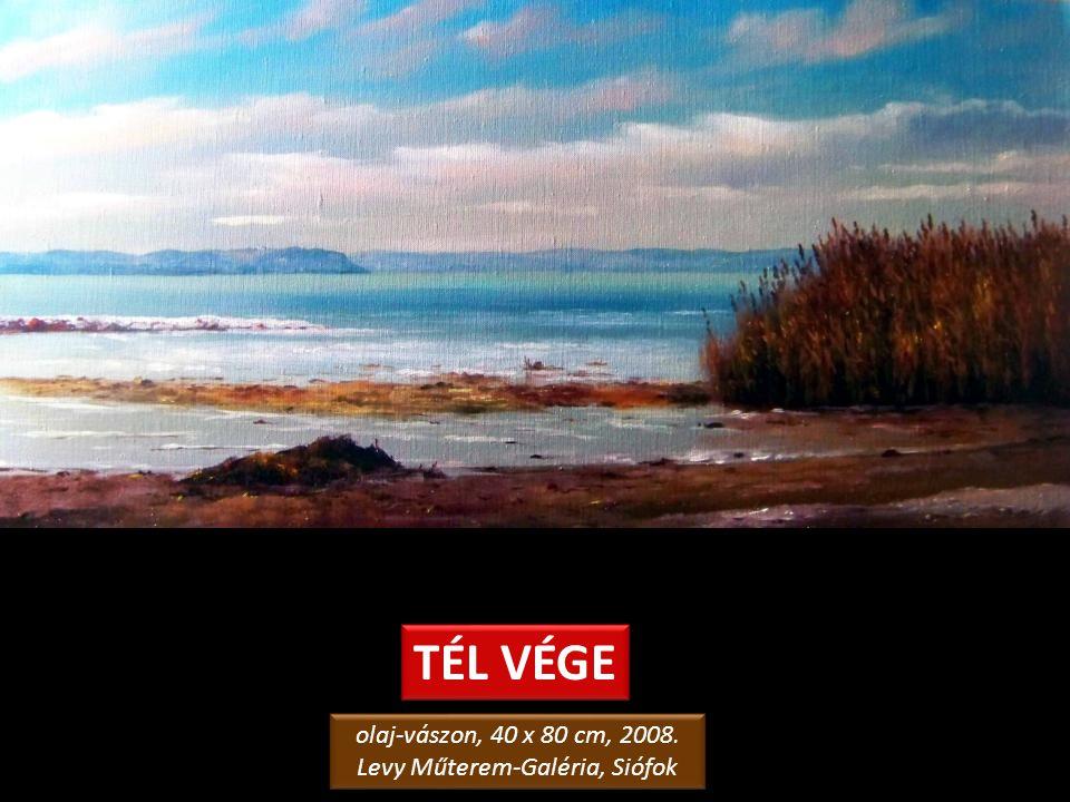 JEGES NAPLEMENTE olaj-farostlemez, 60 x 50 cm, 2006. magángyűjtemény, Siófok olaj-farostlemez, 60 x 50 cm, 2006. magángyűjtemény, Siófok
