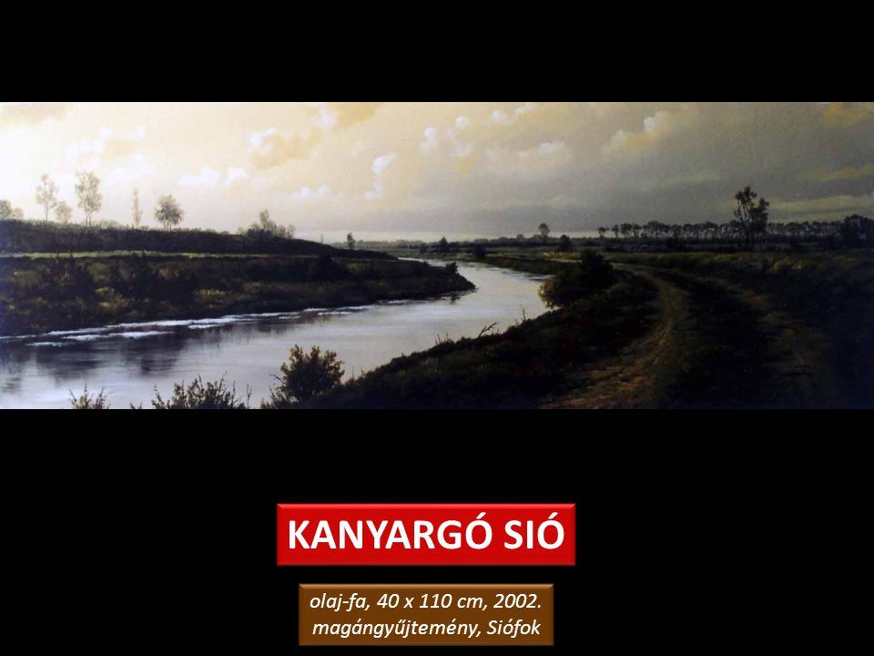 NÁDAS A SIÓ-PARTON olaj-farost, 50 x 70 cm, 1992. Hotel Janus, Siófok olaj-farost, 50 x 70 cm, 1992. Hotel Janus, Siófok