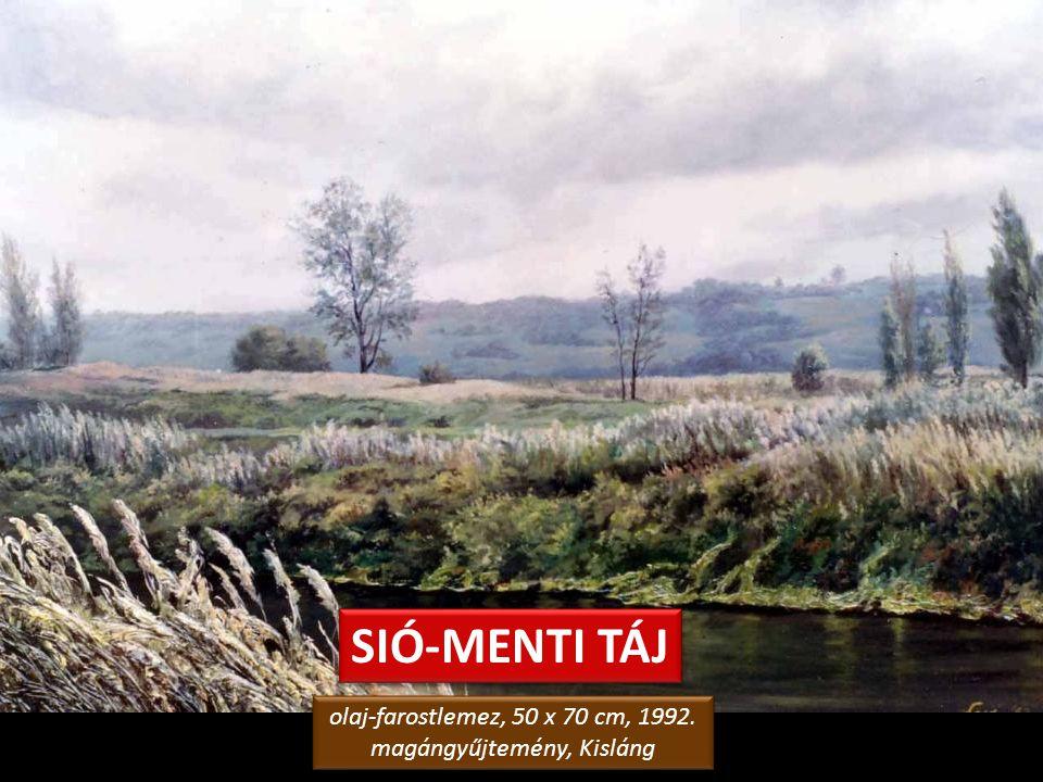 KANYARGÓ SIÓ olaj-fa, 40 x 110 cm, 2002. magángyűjtemény, Siófok olaj-fa, 40 x 110 cm, 2002. magángyűjtemény, Siófok