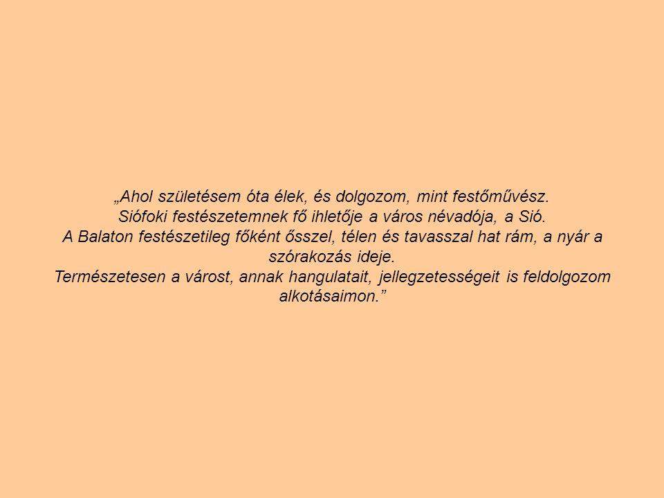 SIÓFOKI NOSZTALGIA olaj-fatábla, 50 x 69 cm, 2013. Levy Műterem-Galéria, Siófok olaj-fatábla, 50 x 69 cm, 2013. Levy Műterem-Galéria, Siófok