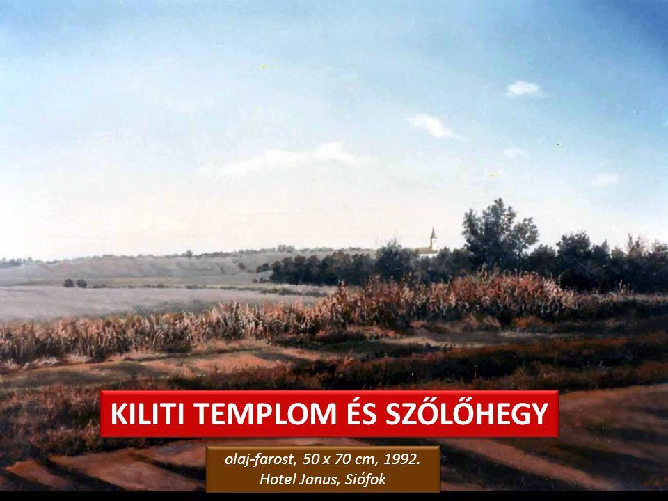 SIÓFOKI HATÁR – A tél kezdete olaj-farostlemez, 40 x 60 cm, 2006. Levy Műterem-Galéria, Siófok olaj-farostlemez, 40 x 60 cm, 2006. Levy Műterem-Galéri