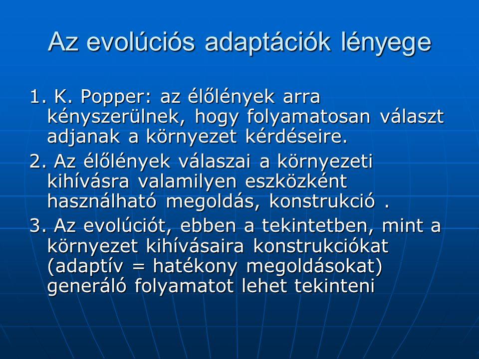 Az evolúciós adaptációk lényege 1. K.