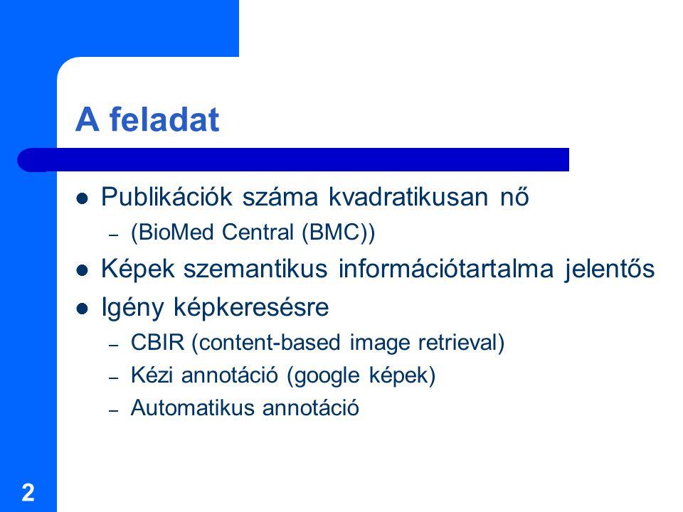 2 A feladat Publikációk száma kvadratikusan nő – (BioMed Central (BMC)) Képek szemantikus információtartalma jelentős Igény képkeresésre – CBIR (content-based image retrieval) – Kézi annotáció (google képek) – Automatikus annotáció