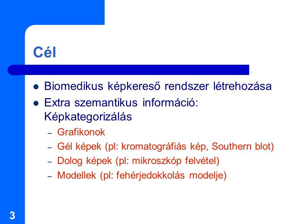3 Cél Biomedikus képkereső rendszer létrehozása Extra szemantikus információ: Képkategorizálás – Grafikonok – Gél képek (pl: kromatográfiás kép, Southern blot) – Dolog képek (pl: mikroszkóp felvétel) – Modellek (pl: fehérjedokkolás modelje)