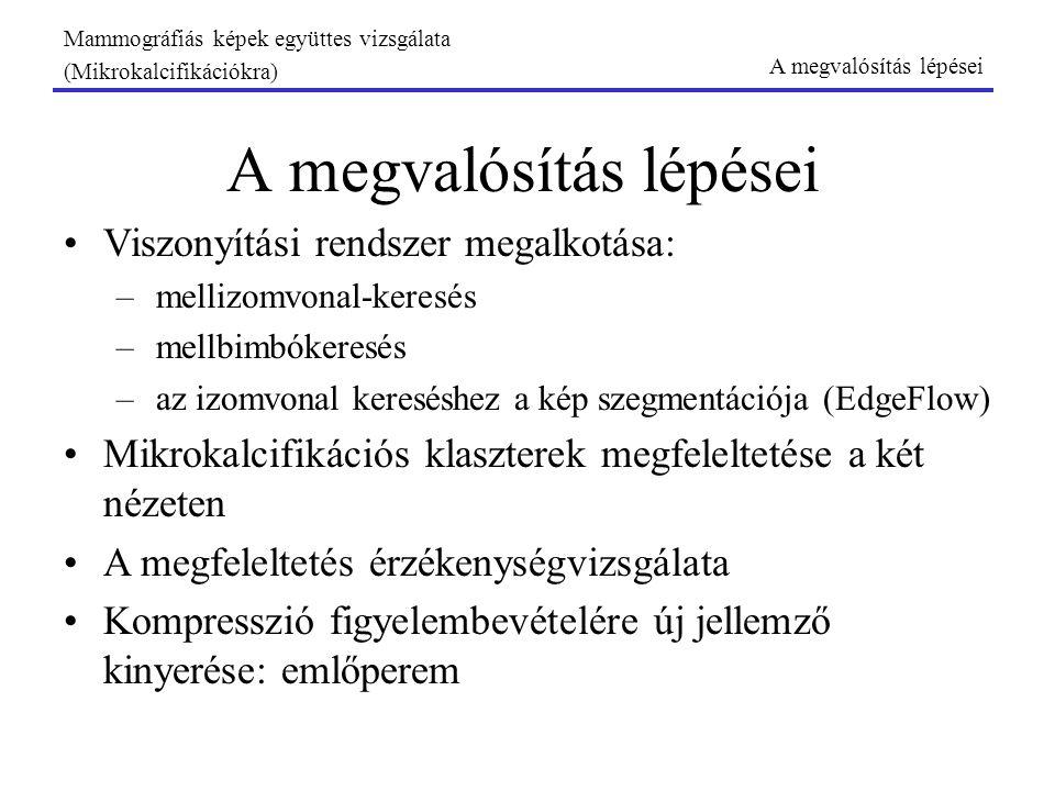 A viszonyítási rendszer Három hipotézis: 1.Mellbimbó: érintő 2.