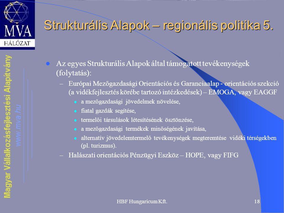 HBF Hungaricum Kft.18 Strukturális Alapok – regionális politika 5. Az egyes Strukturális Alapok által támogatott tevékenységek (folytatás): – Európai