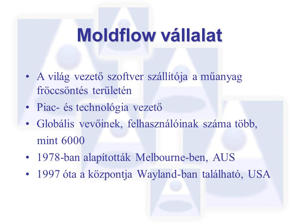 Moldflow vállalat A világ vezető szoftver szállítója a műanyag fröccsöntés területén Piac- és technológia vezető Globális vevőinek, felhasználóinak száma több, mint 6000 1978-ban alapították Melbourne-ben, AUS 1997 óta a központja Wayland-ban található, USA
