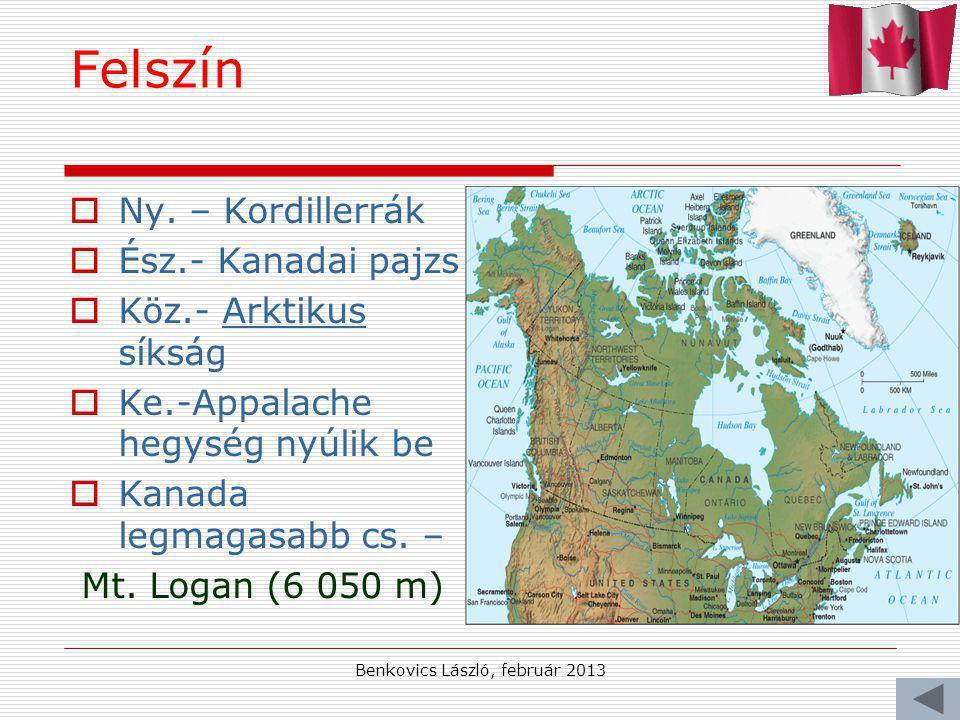 Benkovics László, február 2013 Felszín NNy. – Kordillerrák ÉÉsz.- Kanadai pajzs KKöz.- Arktikus síkság KKe.-Appalache hegység nyúlik be KKan