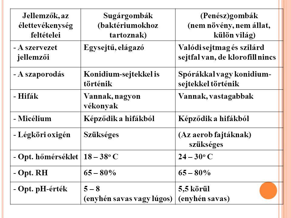 Jellemzők, az élettevékenység feltételei Sugárgombák (baktériumokhoz tartoznak) (Penész)gombák (nem növény, nem állat, külön világ) - A szervezet jell