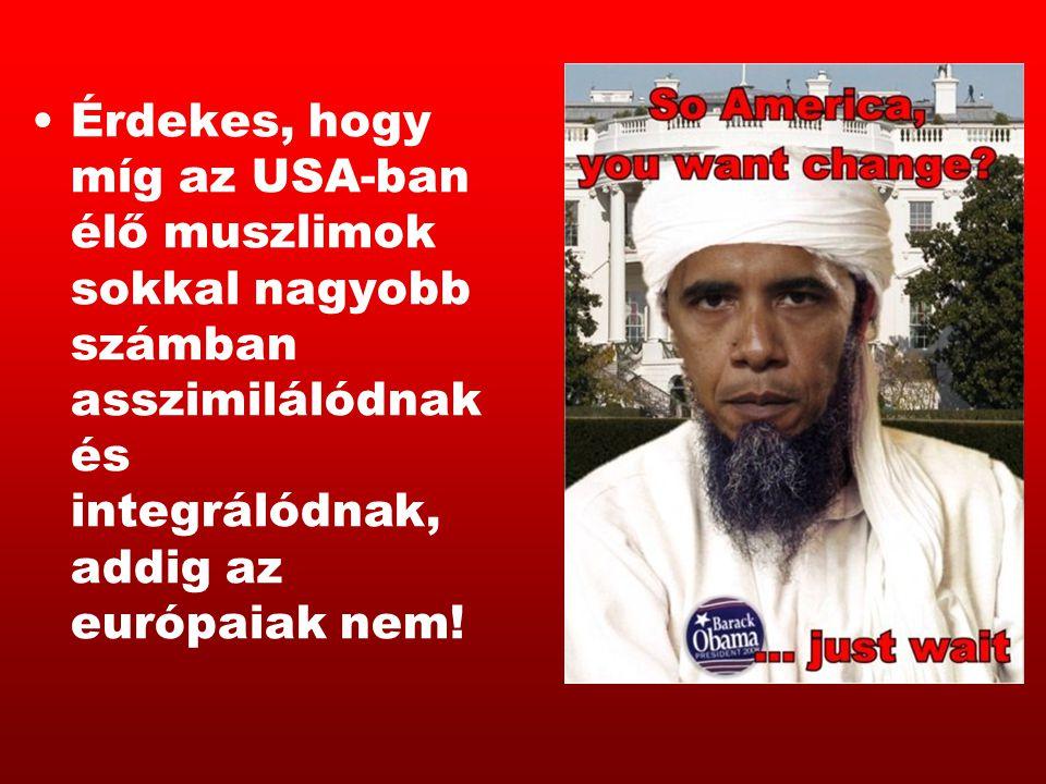 Érdekes, hogy míg az USA-ban élő muszlimok sokkal nagyobb számban asszimilálódnak és integrálódnak, addig az európaiak nem!