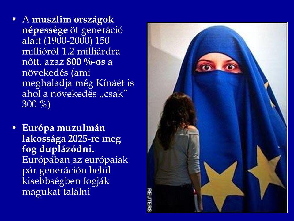 """A muszlim országok népessége öt generáció alatt (1900-2000) 150 millióról 1.2 milliárdra nőtt, azaz 800 %-os a növekedés (ami meghaladja még Kínáét is ahol a növekedés """"csak 300 %) Európa muzulmán lakossága 2025-re meg fog duplázódni."""
