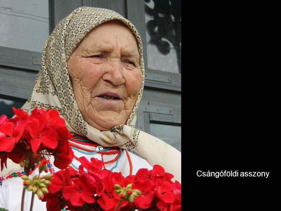 Csángóföldi asszony