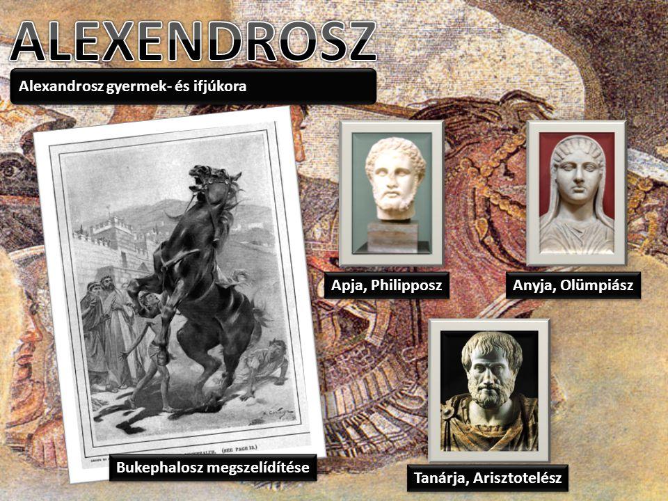 Alexandrosz gyermek- és ifjúkora Bukephalosz megszelídítése Apja, Philipposz Anyja, Olümpiász Tanárja, Arisztotelész