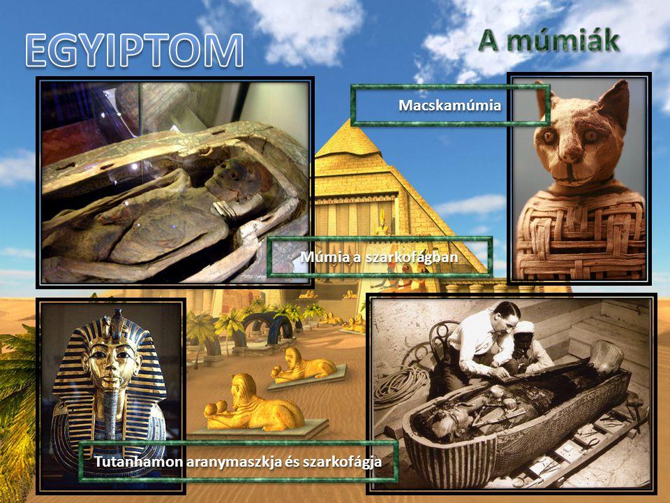 Múmia a szarkofágban MacskamúmiaMacskamúmia Tutanhamon aranymaszkja és szarkofágja
