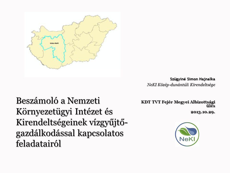 Szügyiné Simon Hajnalka NeKI Közép-dunántúli Kirendeltsége KDT TVT Fejér Megyei Albizottsági ülés 2013.10.29. Beszámoló a Nemzeti Környezetügyi Intéze