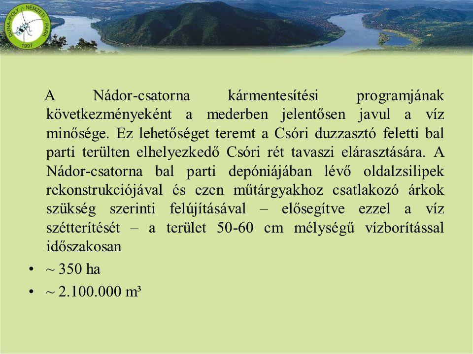 A Nádor-csatorna kármentesítési programjának következményeként a mederben jelentősen javul a víz minősége. Ez lehetőséget teremt a Csóri duzzasztó fel