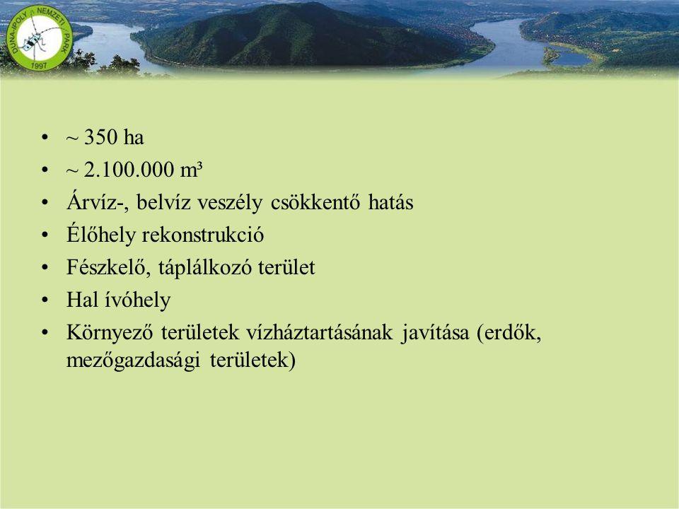 ~ 350 ha ~ 2.100.000 m³ Árvíz-, belvíz veszély csökkentő hatás Élőhely rekonstrukció Fészkelő, táplálkozó terület Hal ívóhely Környező területek vízhá