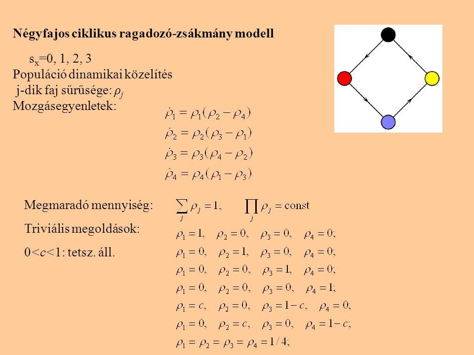 Négyfajos ciklikus ragadozó-zsákmány modell s x =0, 1, 2, 3 Populáció dinamikai közelítés j-dik faj sűrűsége: ρ j Mozgásegyenletek: Megmaradó mennyiség: Triviális megoldások: 0<c<1: tetsz.