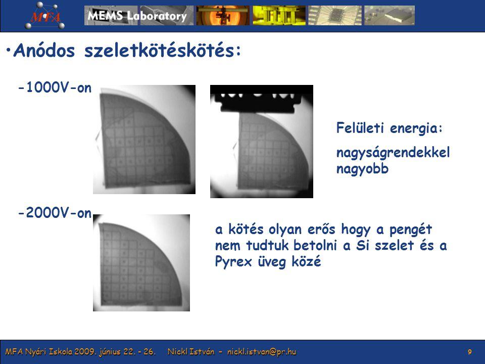 MFA Nyári Iskola 2009. június 22. - 26.