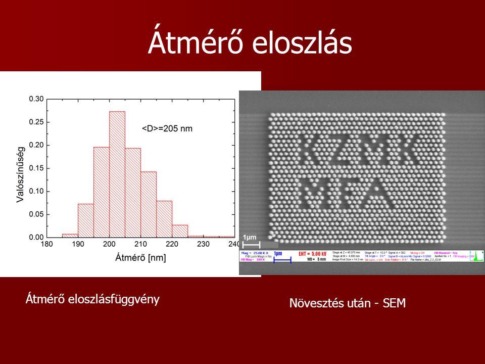 Átmérő eloszlásfüggvény Növesztés után - SEM Átmérő eloszlás