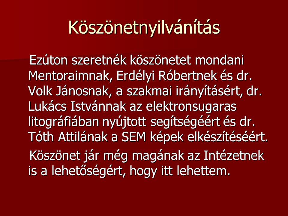 Köszönetnyilvánítás Ezúton szeretnék köszönetet mondani Mentoraimnak, Erdélyi Róbertnek és dr. Volk Jánosnak, a szakmai irányításért, dr. Lukács Istvá