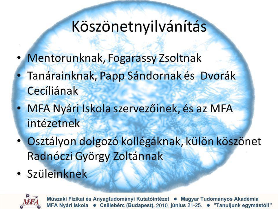Köszönetnyilvánítás Mentorunknak, Fogarassy Zsoltnak Tanárainknak, Papp Sándornak és Dvorák Cecíliának MFA Nyári Iskola szervezőinek, és az MFA intéze