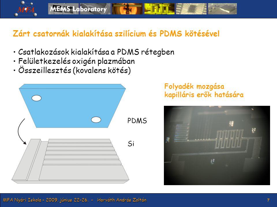 MFA Nyári Iskola - 2009. június 22-26.