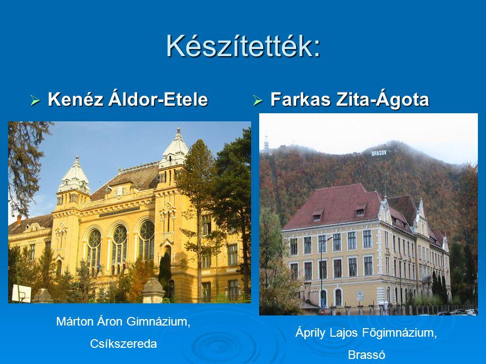 Készítették:  Kenéz Áldor-Etele  Farkas Zita-Ágota Áprily Lajos Főgimnázium, Brassó Márton Áron Gimnázium, Csíkszereda