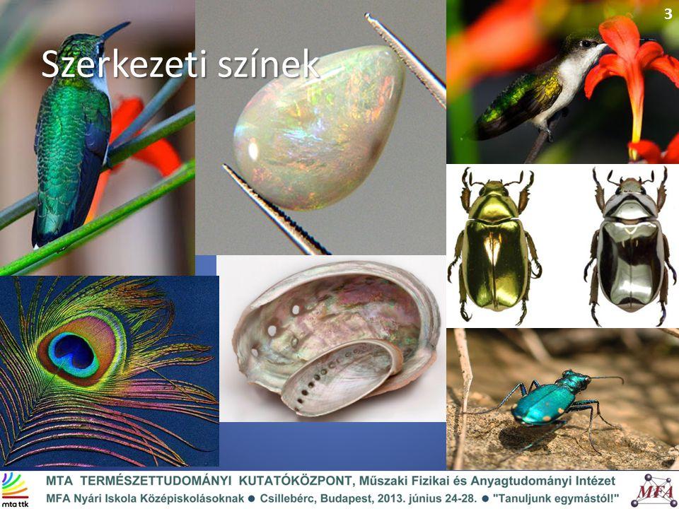 Szerkezeti színek 3