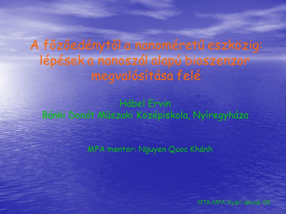 A főzőedénytől a nanoméretű eszközig: lépések a nanoszál alapú bioszenzor megvalósítása felé Hábel Ervin Bánki Donát Műszaki Középiskola, Nyíregyháza MTA-MFA Nyári iskola '09 MFA mentor: Nguyen Quoc Khánh
