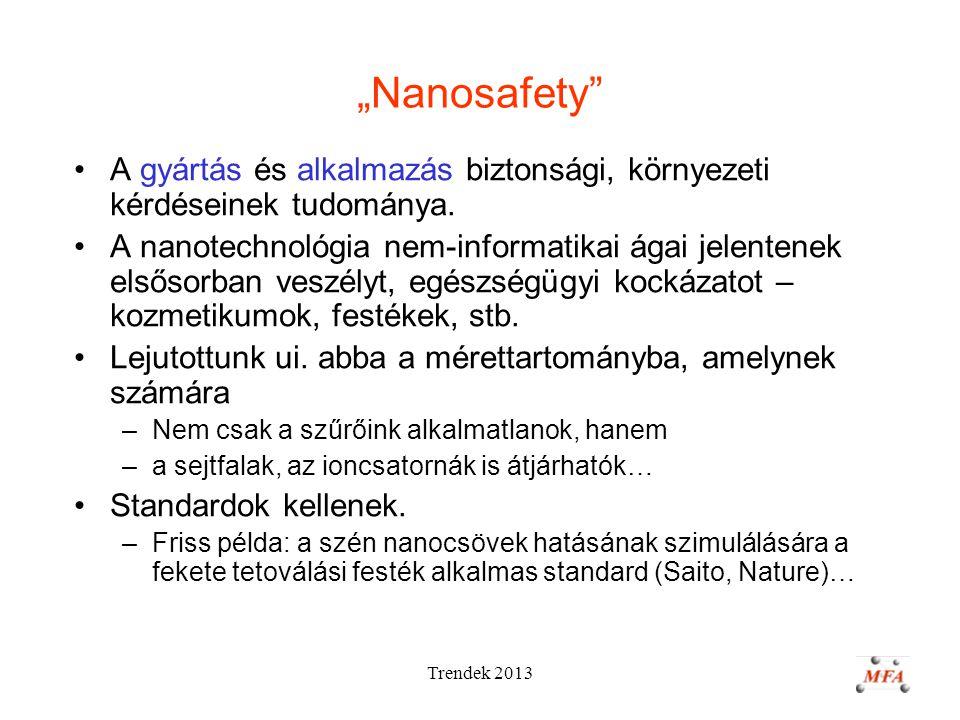 """Trendek 2013 """"Nanosafety A gyártás és alkalmazás biztonsági, környezeti kérdéseinek tudománya."""
