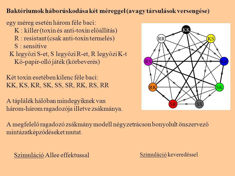 SzimulációSzimuláció Allee effektussal Baktériumok háborúskodása két méreggel (avagy társulások versengése) egy méreg esetén három féle baci: K : kill