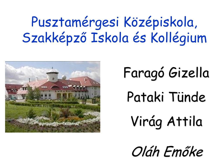 Pusztamérgesi Középiskola, Szakképző Iskola és Kollégium Faragó Gizella Pataki Tünde Virág Attila Oláh Emőke