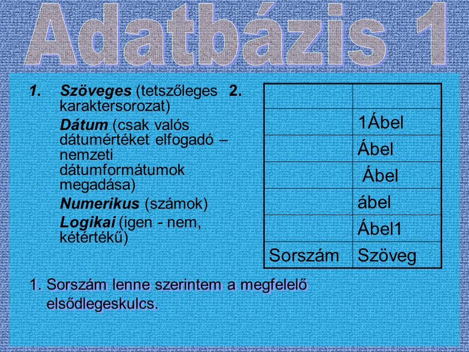 1.Szöveges (tetszőleges 2. karaktersorozat) Dátum (csak valós dátumértéket elfogadó – nemzeti dátumformátumok megadása) Numerikus (számok) Logikai (ig