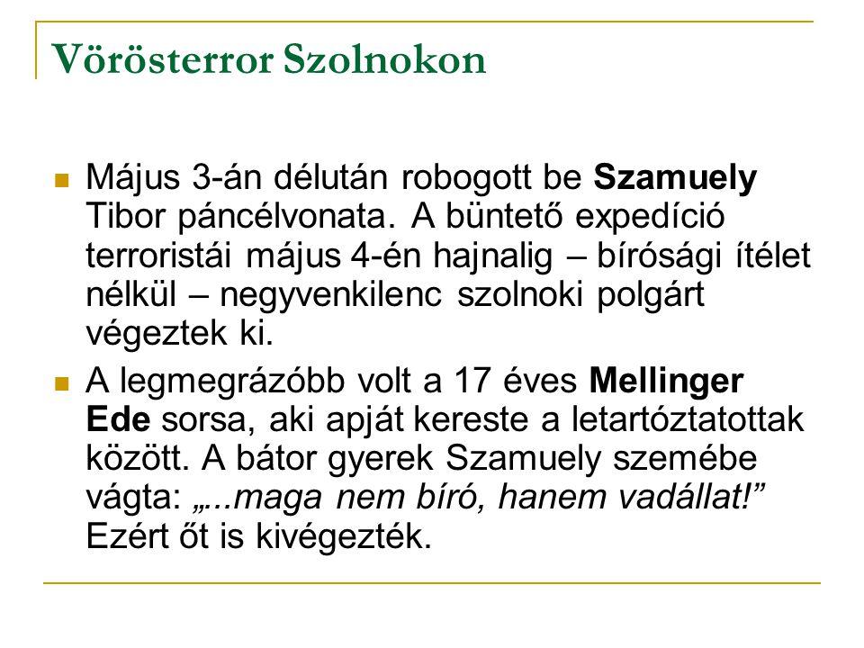 Vörösterror Szolnokon Május 3-án délután robogott be Szamuely Tibor páncélvonata. A büntető expedíció terroristái május 4-én hajnalig – bírósági ítéle