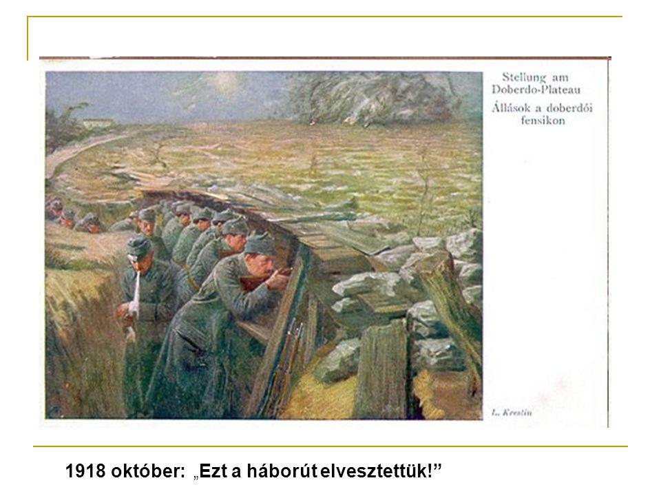 Az első világháború hatása Szolnokon Megállította a város dinamikus fejlődését Elesett a frontokon 305 szolnoki katona Sokan csak évek múlva kerülnek haza a hadifogságból munkanélküliség közellátási problémák
