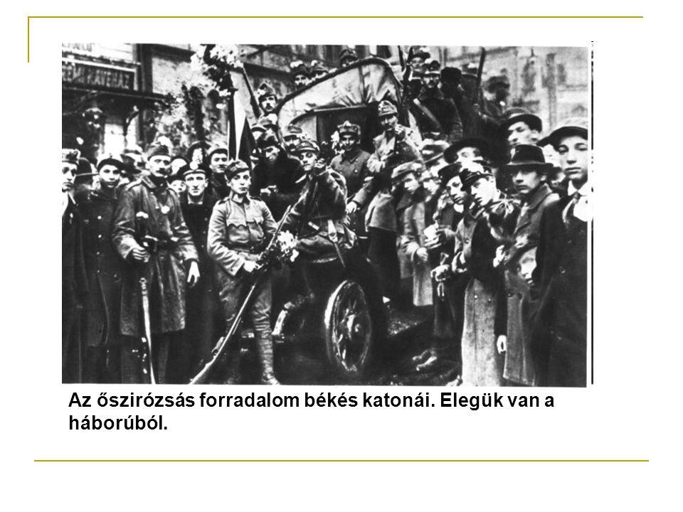 A polgári társadalom demokratizálását remélik.