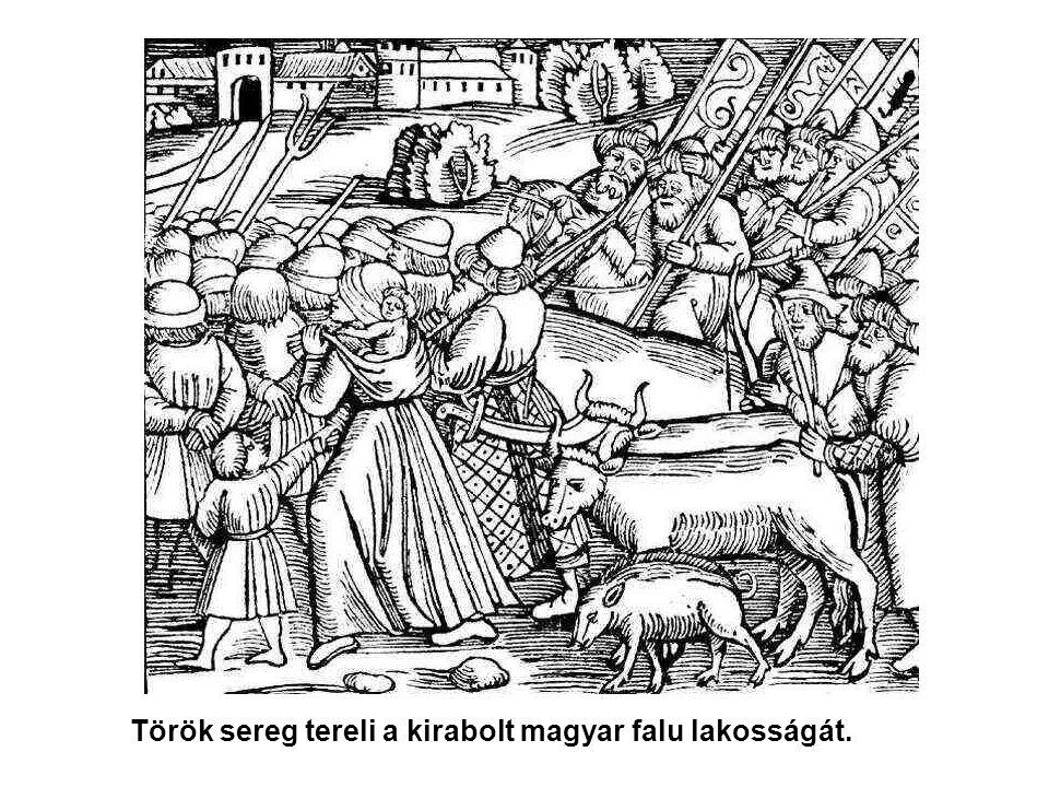 Adóbevételek –A város bevételének nagyobb részét a tiszai átkelőhely adta: itt állt az első állandó Tisza-híd –a kisebbet a magyar lakosság feudális adója 1541-ben 40 ház, 53 adófizetővel 1591-ben 12 adófizető.