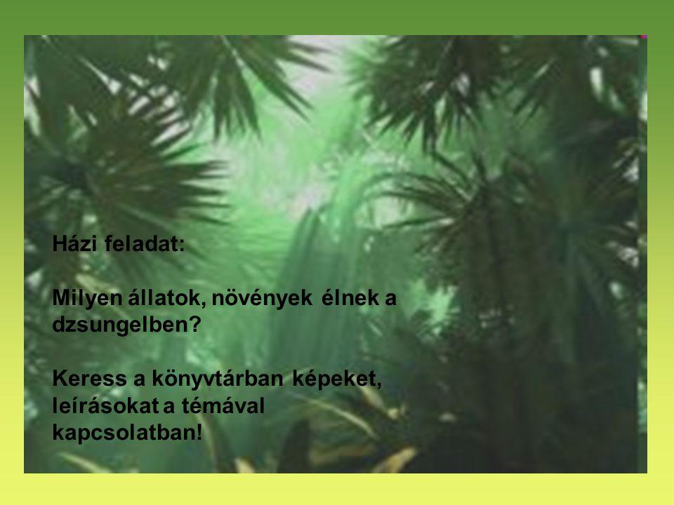 Házi feladat: Milyen állatok, növények élnek a dzsungelben? Keress a könyvtárban képeket, leírásokat a témával kapcsolatban!