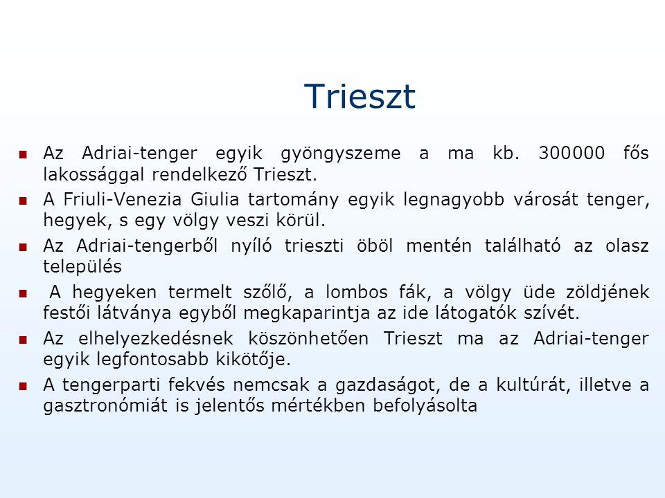 Trieszt közlekedési hálózata A trieszti kikötő Itália legjelentősebbjei közé tartozik, s egyben felső Adria meghatározó jelentőségű hajóállomása is.