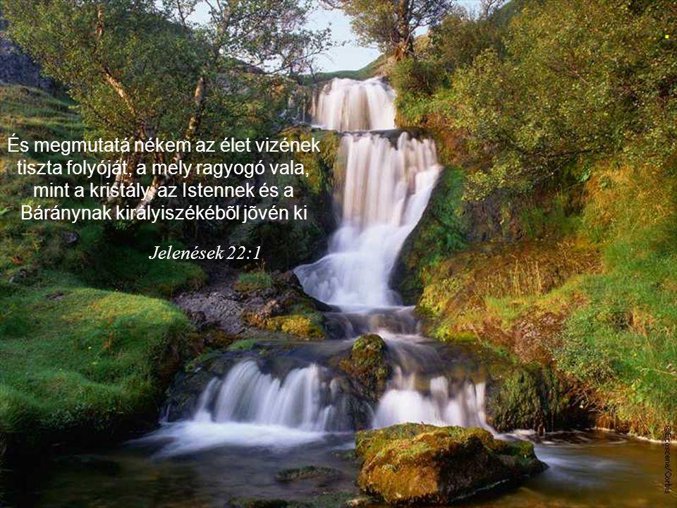Én vagyok az út, az igazság és az élet; senki sem mehet az Atyához, hanemha én általam. János 14:6