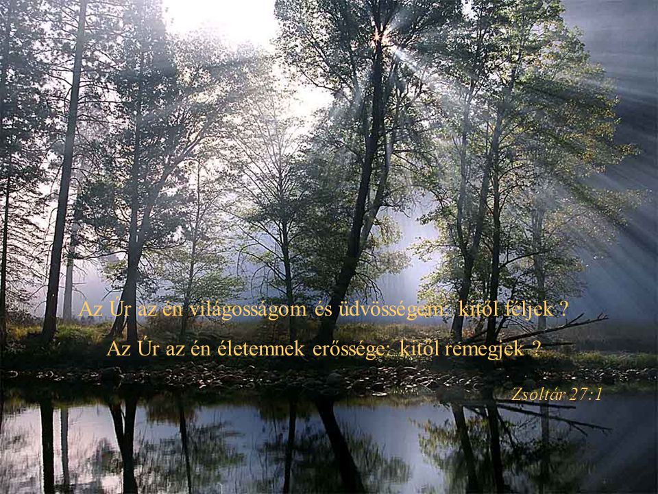 . És megmutatá nékem az élet vizének tiszta folyóját, a mely ragyogó vala, mint a kristály, az Istennek és a Báránynak királyiszékébõl jõvén ki Jelenések 22:1