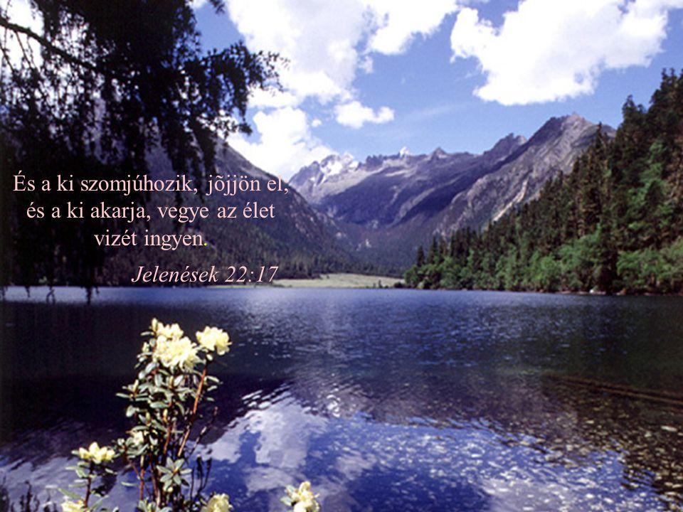 És nékem milyen kedvesek a te gondolataid, oh Isten! Mily nagy azoknak summája! Számlálgatom őket: többek a fövénynél;... Zsoltár 139:17-18