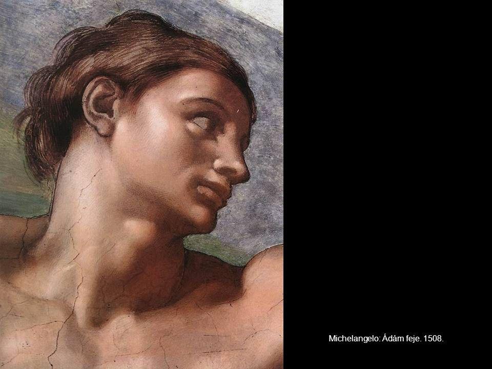 Michelangelo: Ádám feje. 1508.