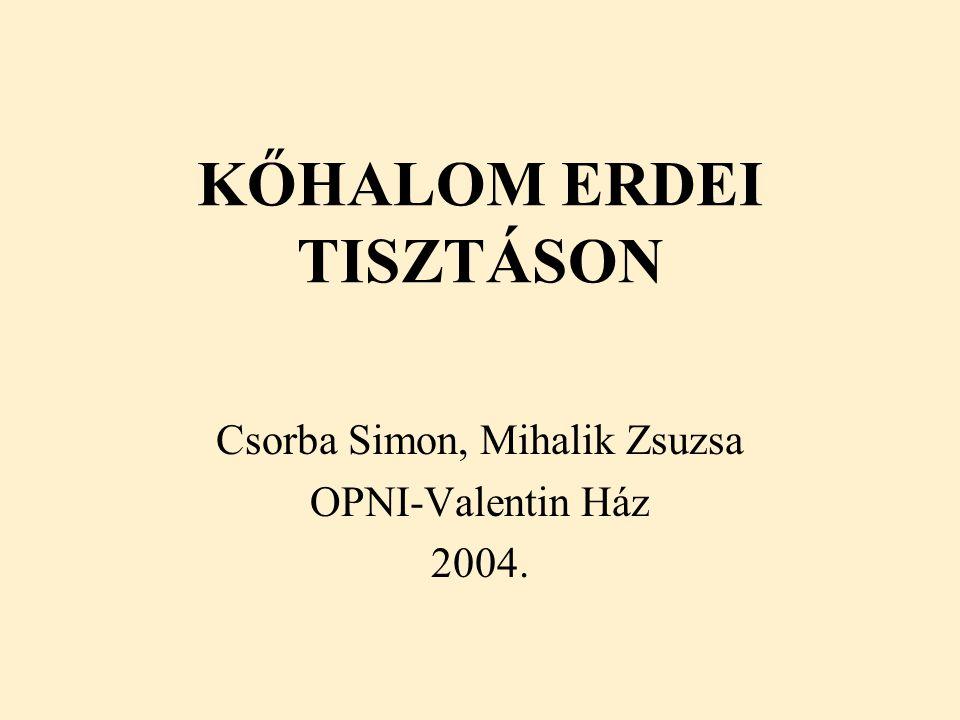 KŐHALOM ERDEI TISZTÁSON Csorba Simon, Mihalik Zsuzsa OPNI-Valentin Ház 2004.
