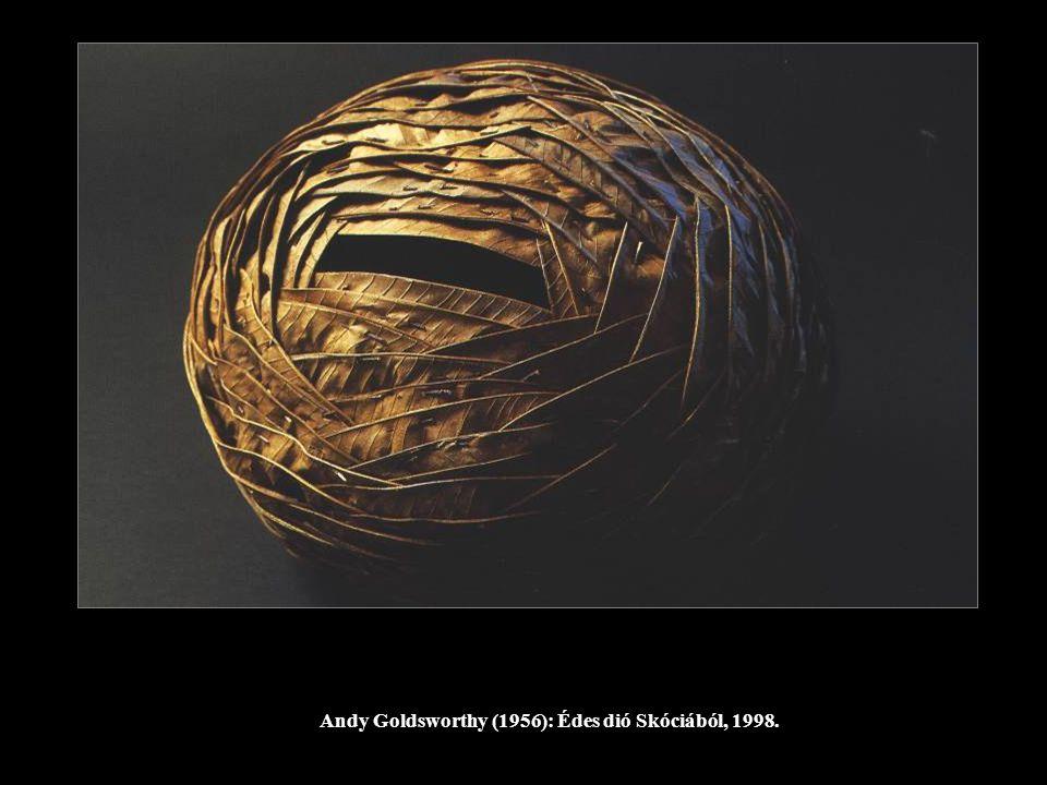 Andy Goldsworthy (1956): Édes dió Skóciából, 1998.