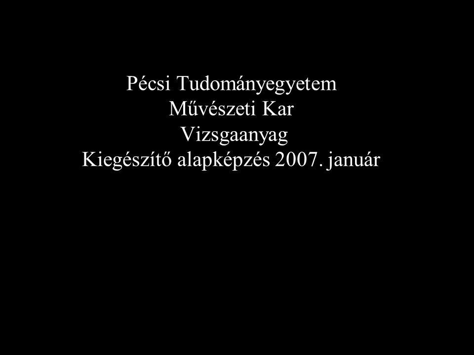 Pécsi Tudományegyetem Művészeti Kar Vizsgaanyag Kiegészítő alapképzés 2007. január