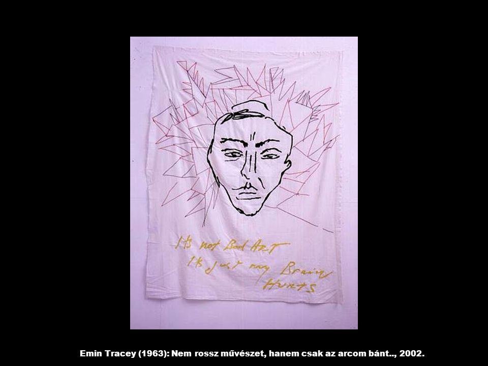 Emin Tracey (1963): Nem rossz művészet, hanem csak az arcom bánt.., 2002.